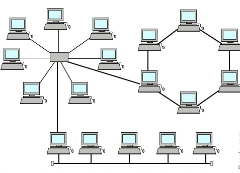 Compare and Contrast Network Topologies (Star, Mesh, Bus