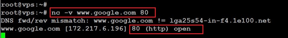 How To Ping A Network Port Tcp Number To Verify If Its Open